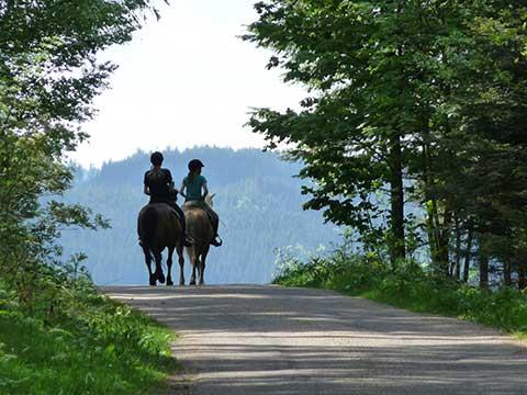 Reiten Schwarzwald