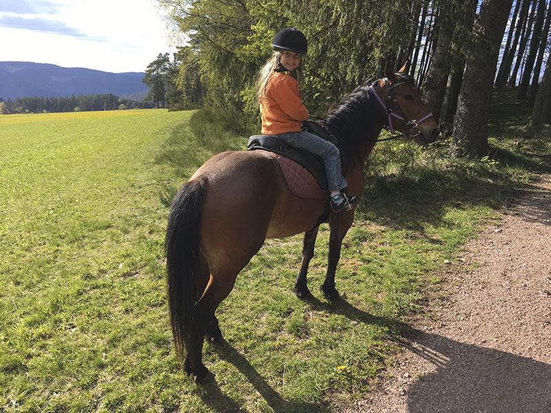 Reiten im Schwarzwald