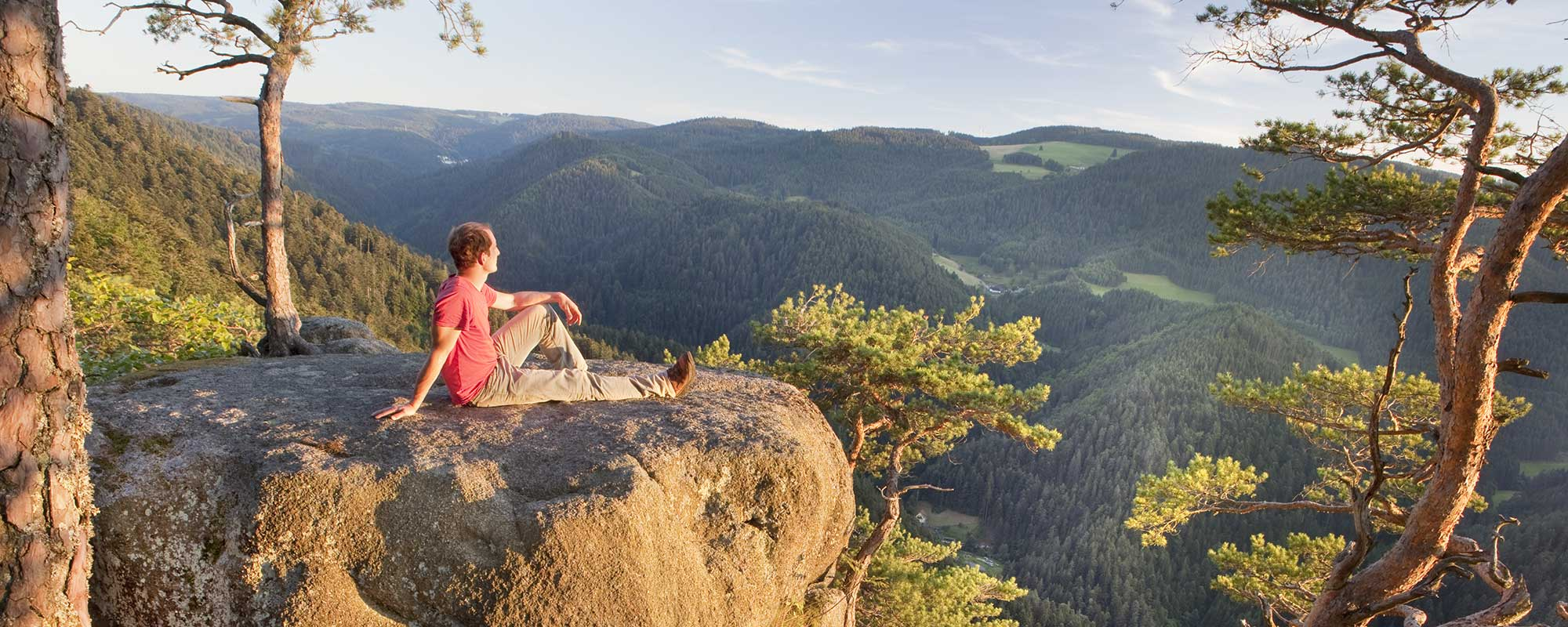 Felsen im Schwarzwald